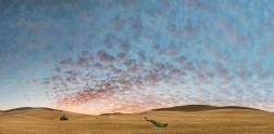 Art of Farmland - No 10 - Lisa Wood